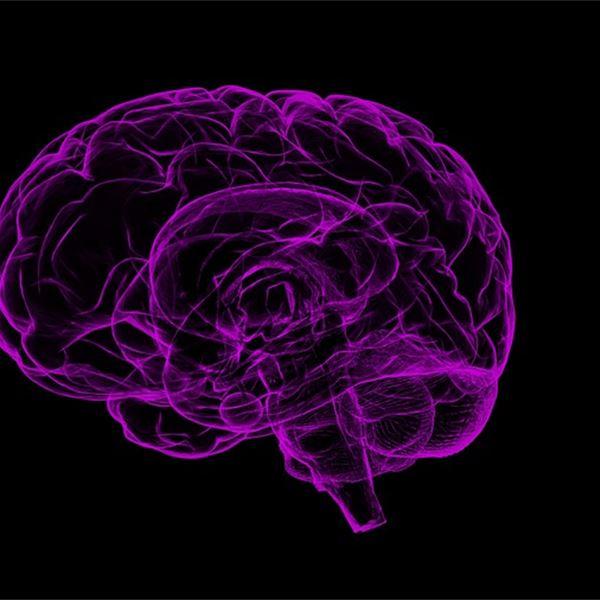 Mental Health - Brain